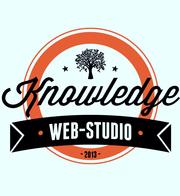 Делаем веб-сайты под ключ,  недорого,  качественно,  быстро.