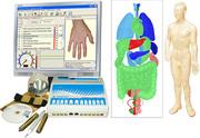 АРМ диагноста по методу Фолля,  гомеопата,  рефлексотерапевта ПЕРЕСВЕТ
