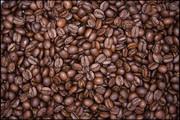 Импортер и производитель кофе в России Franz Coffee Company