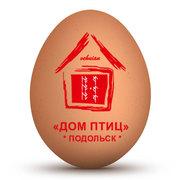 Прямые поставки инкубационного яйца Cobb-500 и Ross-308 из Польши,  Чех