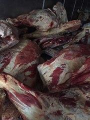 Мясо Говядина,  Свинина,  Баранина оптом из Хакасии от производителя.