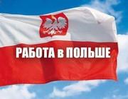 Кондитеры в пекарню-кондитерскую в Польшу